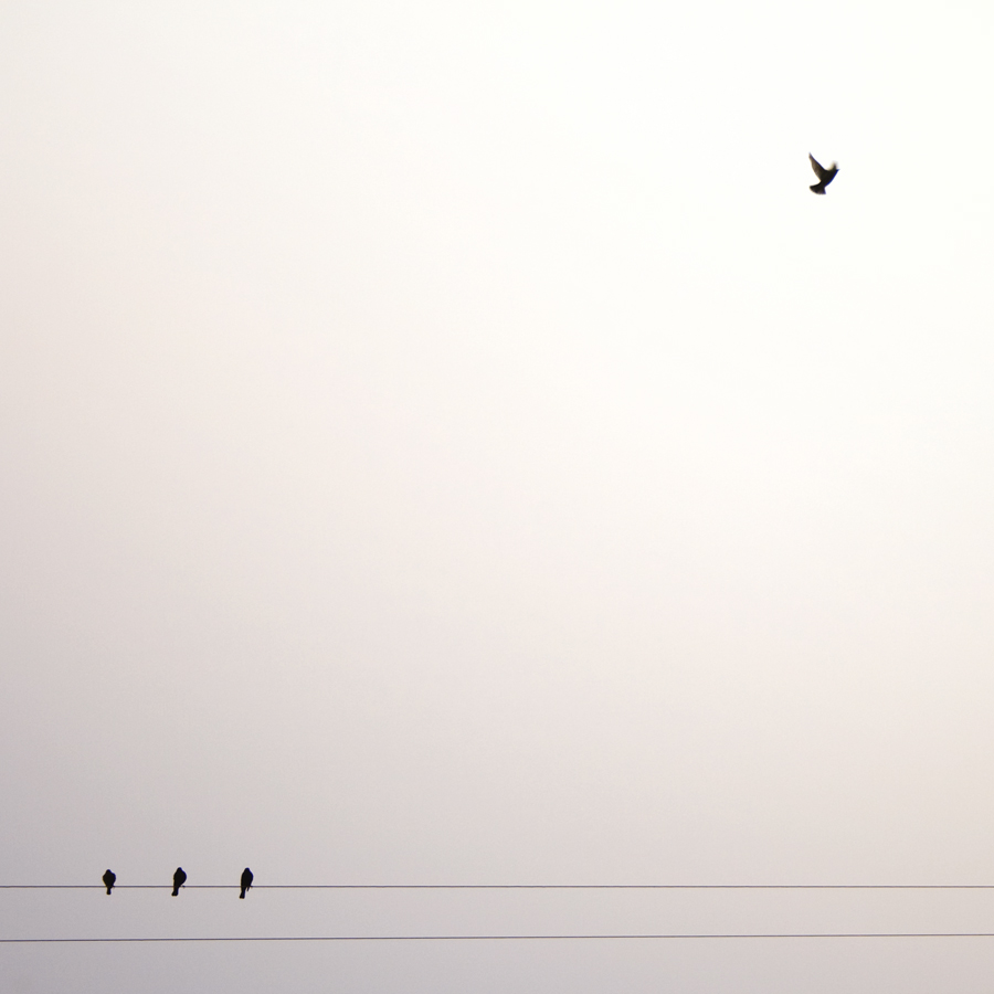 minimalist vicki mar photography